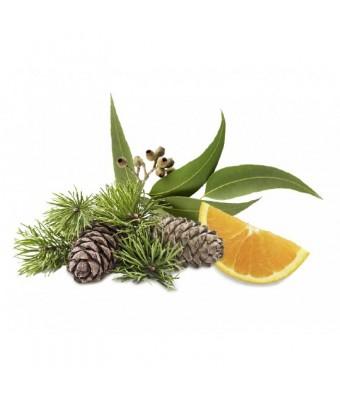 Esenta eucalipt si portocale pentru sauna - 1000 ml