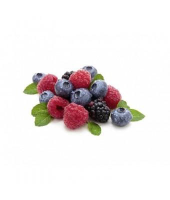 Esenta fructe de padure pentru sauna - 1000 ml